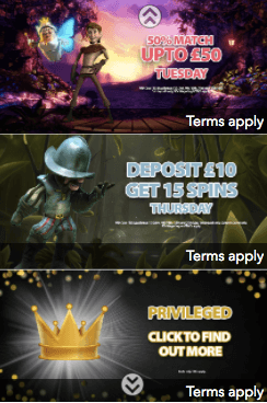 promotion green dog casino